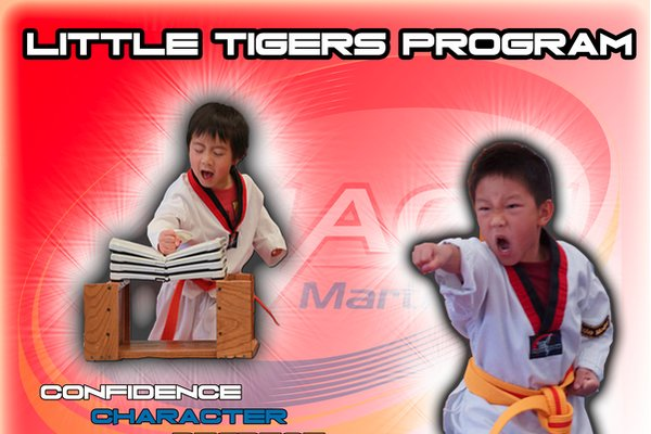 Little Tigers (Beginner) Martial Arts | Mach Martial Arts