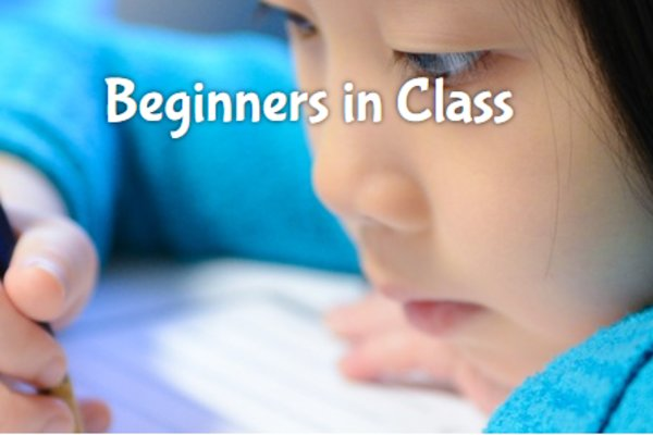 Beginners in class   best in class education center
