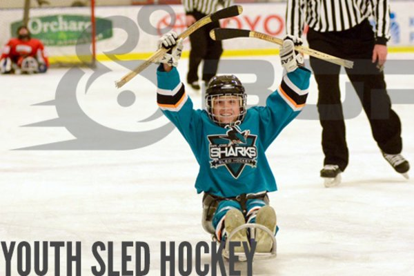 Borp youth hockey headerimage